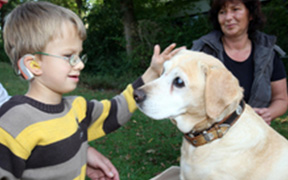 Junge spielt mit Hund